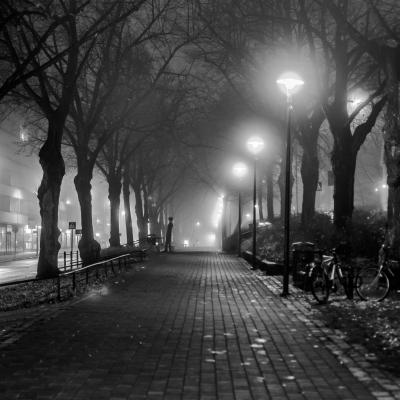 Misty night